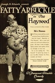 Best Comedy Movies of 1919 : The Hayseed