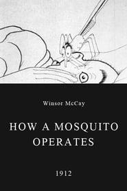 Best Comedy Movies of 1912 : How a Mosquito Operates