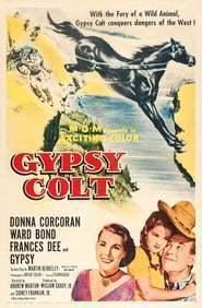 Best Family Movies of 1954 : Gypsy Colt