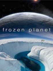 Best Documentary Movies of 2011 : Frozen Planet