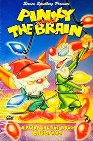 Best Animation Movies of 1995 : A Pinky and the Brain Christmas