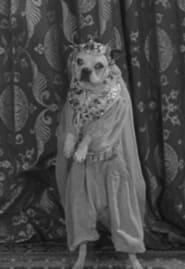 Best Music Movies of 1930 : The Dogway Melody