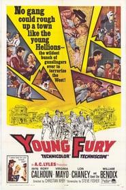 Best Western Movies of 1965 : Young Fury
