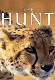 Best Documentary Movies of 2015 : The Hunt