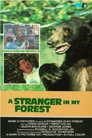 Best Family Movies of 1976 : A Stranger in My Forest
