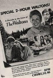 Best Family Movies of 1980 : The Waltons: A Decade of the Waltons