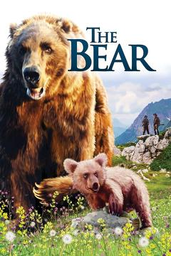 Best Adventure Movies of 1988 : The Bear