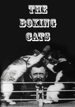 Best Comedy Movies of 1894 : The Boxing Cats (Prof. Welton's)
