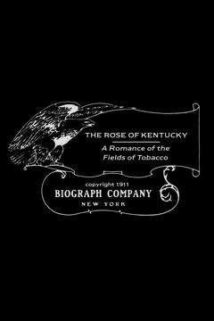 Best Romance Movies of 1911 : The Rose of Kentucky