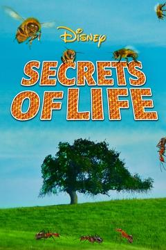 Best Documentary Movies of 1956 : Secrets of Life
