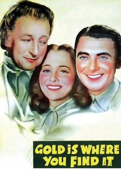 Best History Movies of 1938 : Gold Is Where You Find It