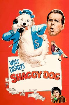 Best Family Movies of 1959 : The Shaggy Dog