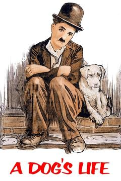 Best Comedy Movies of 1918 : A Dog's Life