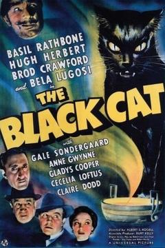 Best Adventure Movies of 1941 : The Black Cat