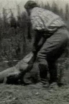 Best Documentary Movies of 1928 : Scenes of the Everglades