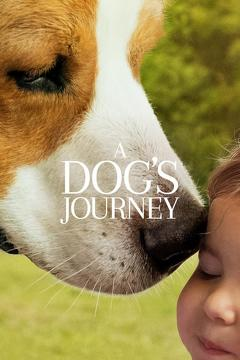 Best Family Movies of This Year: A Dog's Journey