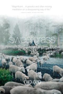 Best Western Movies of 2009 : Sweetgrass