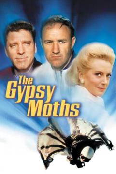 Best Action Movies of 1969 : The Gypsy Moths