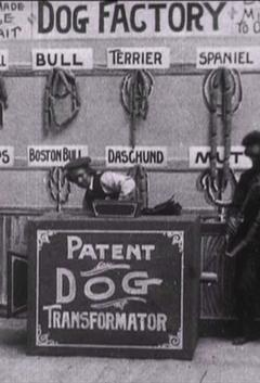Best Comedy Movies of 1904 : Dog Factory