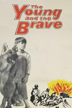 Best War Movies of 1963 : The Young and the Brave
