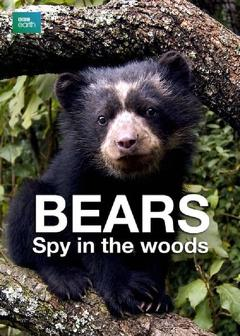 Best Documentary Movies of 2004 : Bears: Spy in the Woods