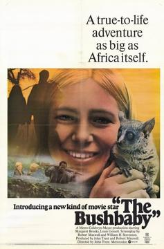 Best History Movies of 1969 : The Bushbaby