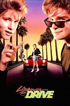 Best Family Movies of 1988 : License to Drive