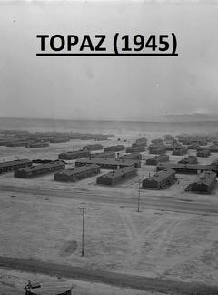 Best History Movies of 1945 : Topaz