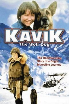 Best Adventure Movies of 1980 : Kavik The Wolf Dog