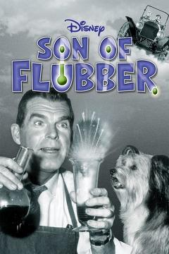 Best Family Movies of 1963 : Son of Flubber