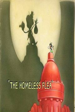 Best Animation Movies of 1940 : The Homeless Flea