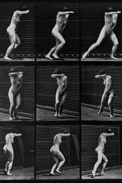 Best Documentary Movies of 1884 : Human Figure in Motion