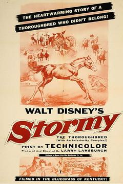 Best Family Movies of 1954 : Stormy, the Thoroughbred