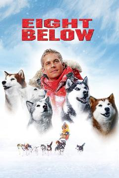Best Family Movies of 2006 : Eight Below