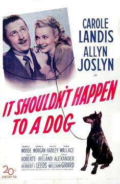 Best Adventure Movies of 1946 : It Shouldn't Happen to a Dog