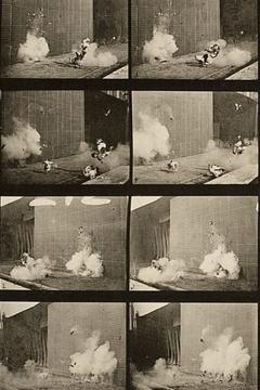 Best Movies of 1887 : Chickens Scared by Torpedo