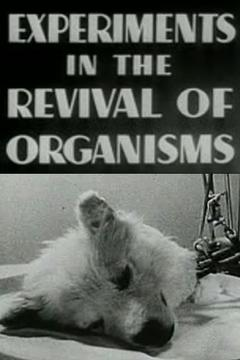 Best Documentary Movies of 1940 : Experiments in the Revival of Organisms