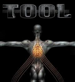 Best Music Movies of 2000 : Tool: Salival