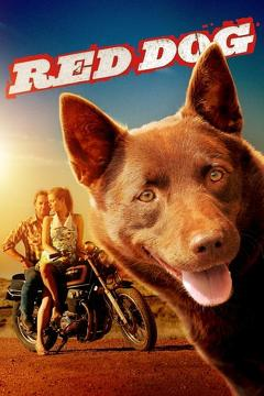 Best Family Movies of 2011 : Red Dog
