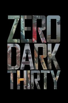 Best History Movies of 2012 : Zero Dark Thirty