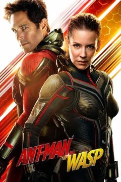 Best Action Movies of 2018 : Ant-Man and the Wasp