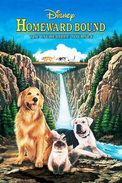 Best Adventure Movies of 1993 : Homeward Bound: The Incredible Journey