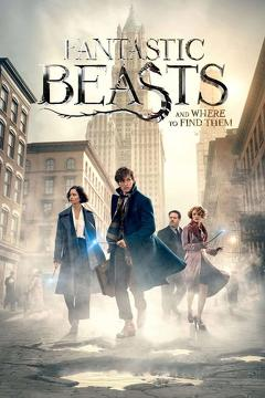 Best Adventure Movies of 2016 : Fantastic Beasts and Where to Find Them