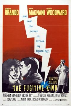 Best Romance Movies of 1960 : The Fugitive Kind