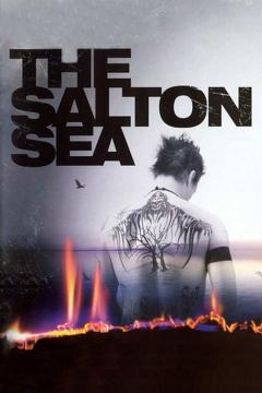 Best Mystery Movies of 2002 : The Salton Sea