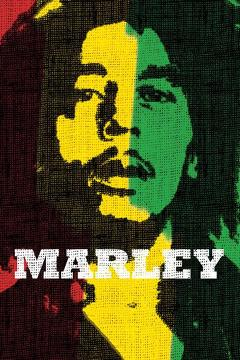 Best Music Movies of 2012 : Marley