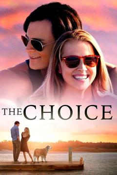Best Romance Movies of 2016 : The Choice