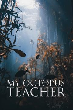 Best Documentary Movies of This Year: My Octopus Teacher
