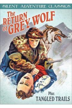 Best Drama Movies of 1926 : The Return of Grey Wolf