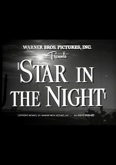Best Western Movies of 1945 : Star in the Night